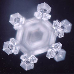 Eiskristall, photographed by Masuro Emoto